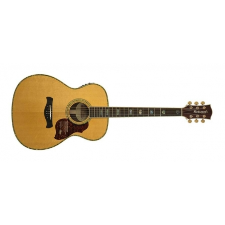 Chitarra acustica Richwood A70EVA