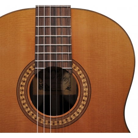 Chitarra acustica Salvador Cortez CC50