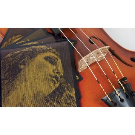 Corda per violino Evah Pirazzi Gold re