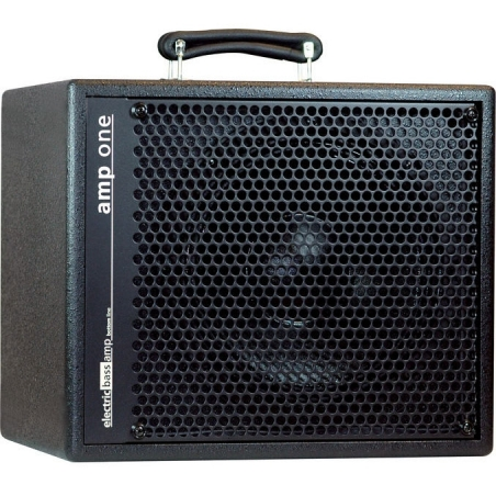 Amplificatore combo AER Amp One