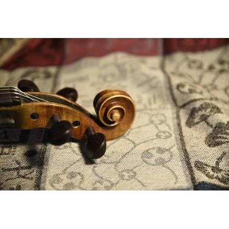 Violino francese di fabbrica antica