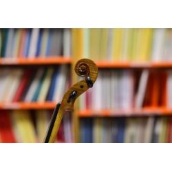 Violino Piccolo maestro