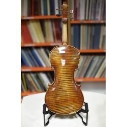 Violino da studio...