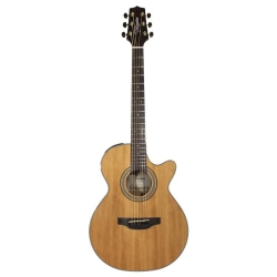Takamine GSF1CE-NG