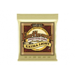 Ernie Ball Earthwood 2006