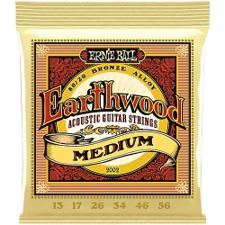 Ernie Ball Earthwood 2002