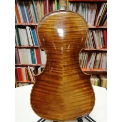 Violino Mirco Tarasconi