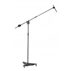 Asta per microfono...
