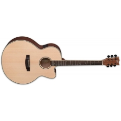LTD LTD J-310E - Natural Satin