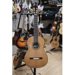 Chitarra classica flamenca...