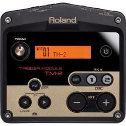 Roland TM-2 - Modulo sonoro...