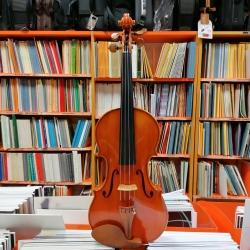 Gilberto Losi - Violino -...