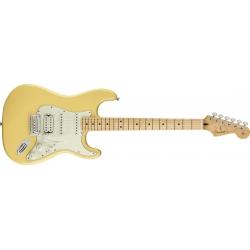 Fender Stratocaster Player...
