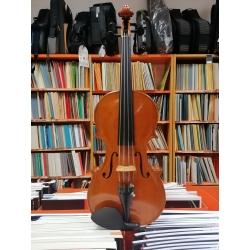 Violino di Alessandro Merloni