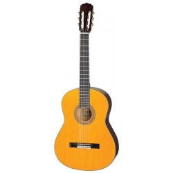 Chitarra classica da studio...